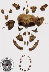 Europe - Romania - Bioarchaeology of Children Osteology Workshop (Transylvania) - 2014