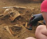 Europe - England - Thornton Abbey Mass Grave and Human Osteology Field School, England - 2014