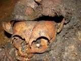 Europe - Romania - Transylvania - Funerary Medieval Excavation - 2013