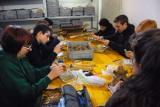 Europe - Italy - Physical Anthropology Boot Camp in Pernosano - 2013